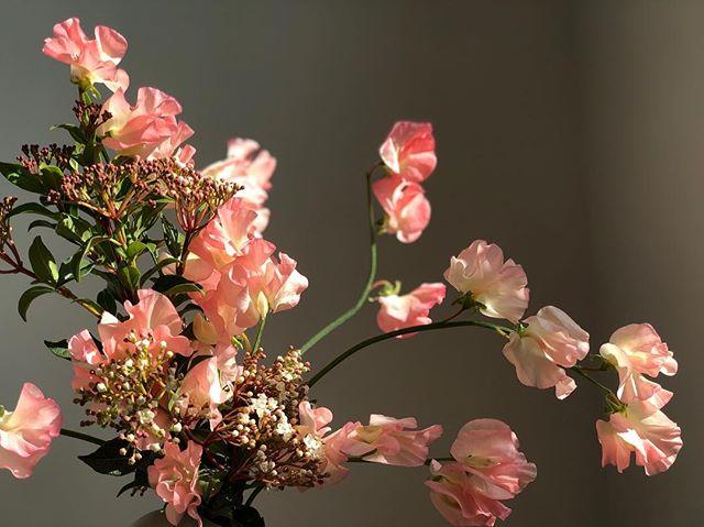 Have a great weekend💖 . . . #flowers #flowershop #japanessweetpea #tgf #nyc #delivery #noflowernolife #aranjira