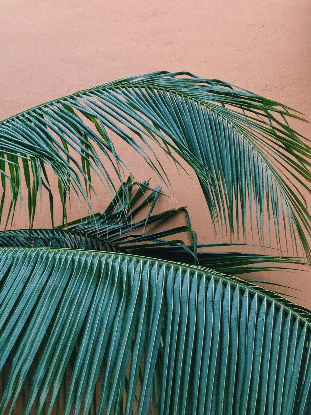 Isla Mujeres 3 - Mexico Tropical® travel agency