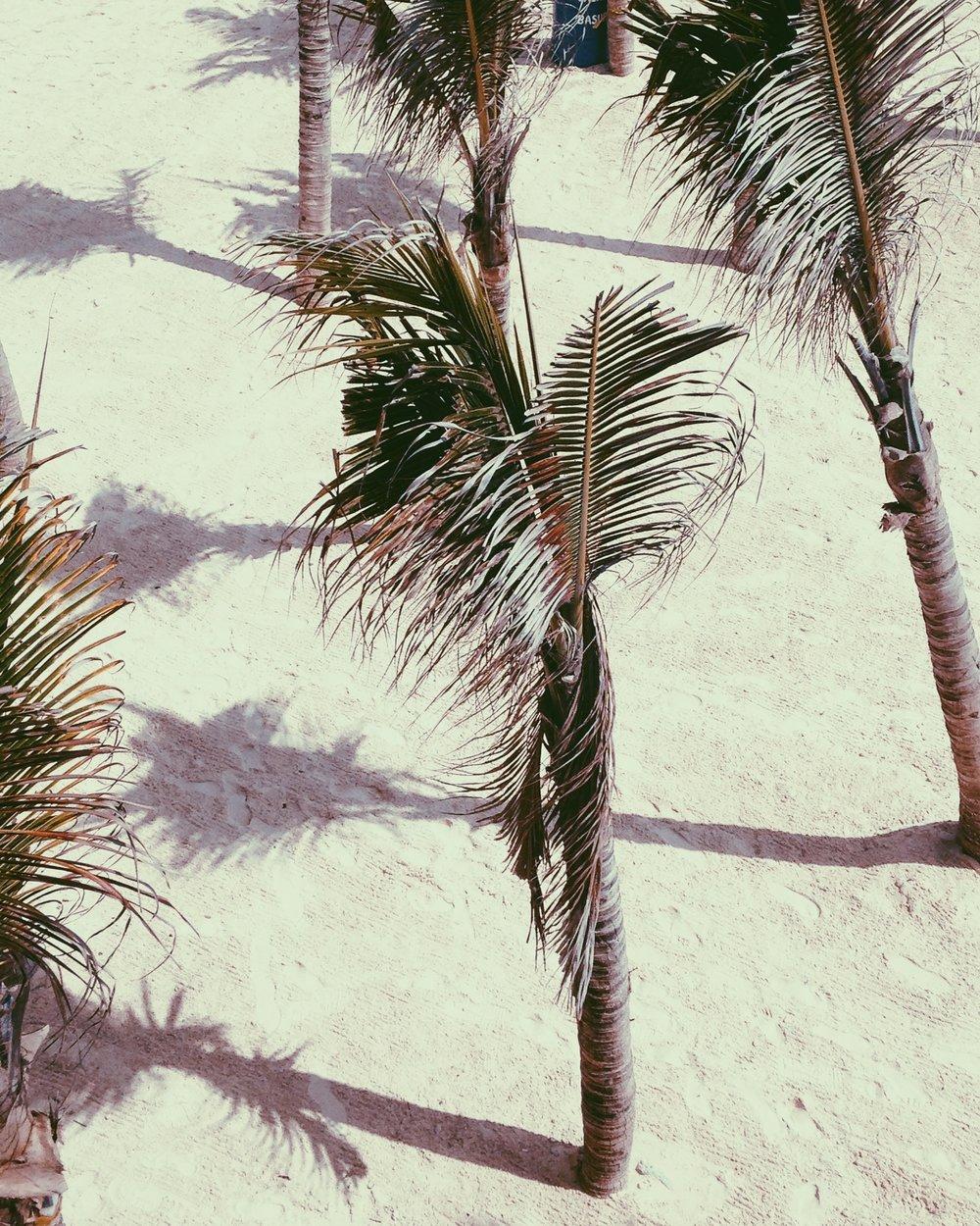 playa del carmen - Mexico Tropical® travel agency