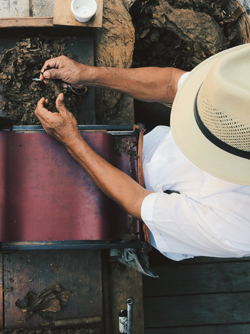 Playa del Carmen cigar rolling - Mexico Tropical® travel agency.JPG