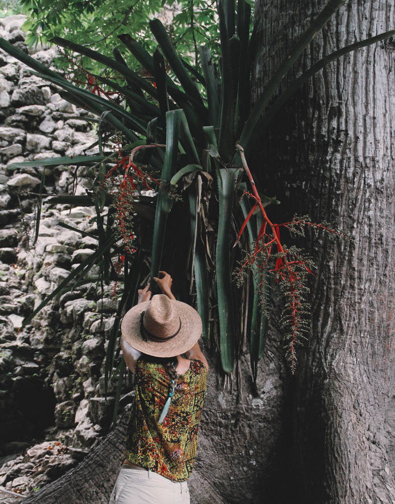 Coba & Punta Laguna - Mexico Tropical® July 2016-33.jpg