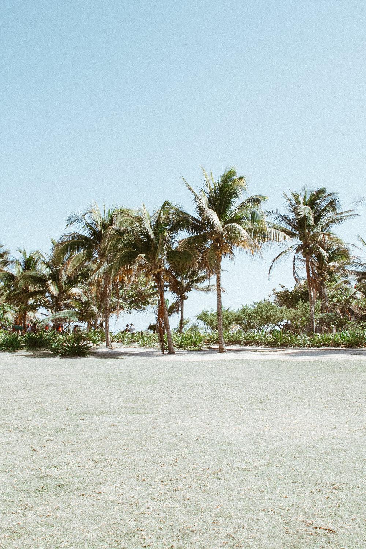 Tulum, Cenote, Eufemia Tg - México Tropical® travel agency-40.jpg
