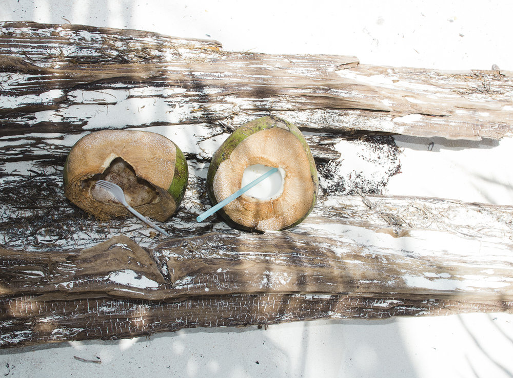 Coconuts in Tulum - Mexico Tropical® travel agency