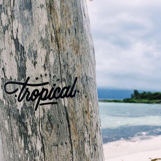 Could anyone guess where this sticker is hanging? 🌴🌴🌴🌴Lol if you do, that's because you are on a great spot 👌🏼