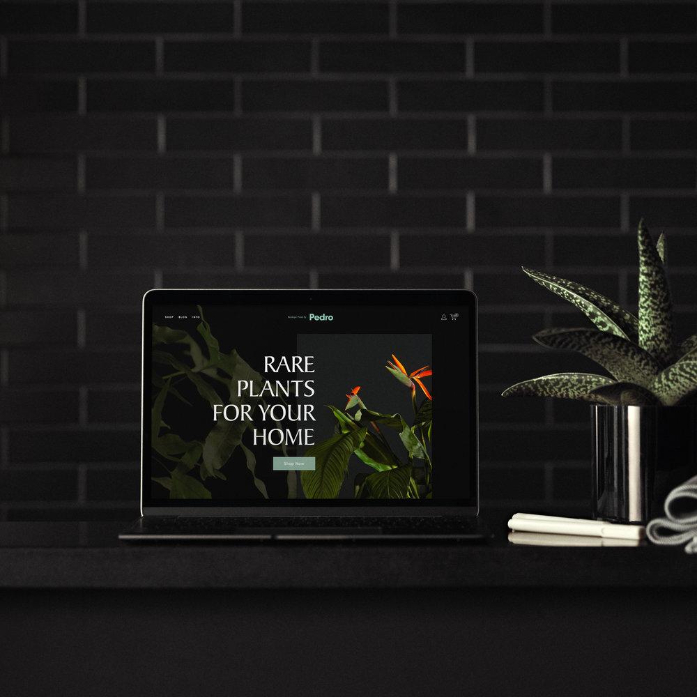 plant-device.jpg