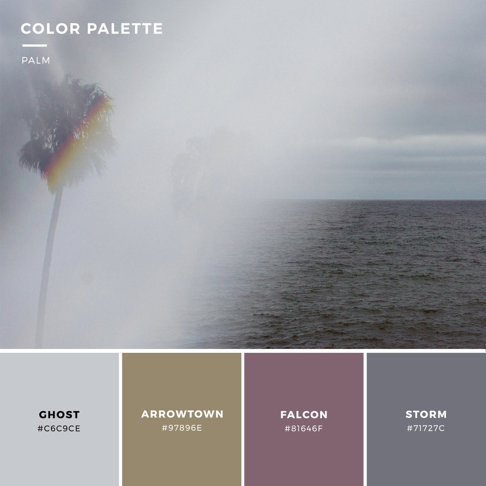 ColorPalette_palm.jpg