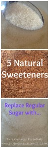 5 Natural Sweeteners
