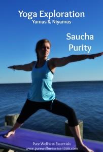 Saucha
