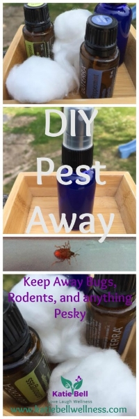 DIY Pest Away