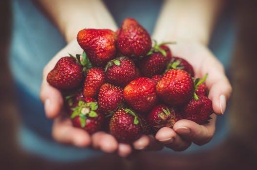 FARMERS MARKETS - HEALTHY FUN ANY DAY!