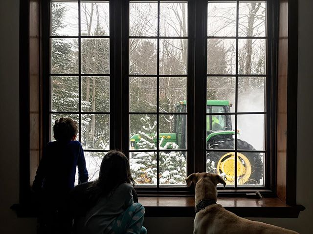 Snow plows are a big deal around here. #evenforthedog 😂 . . . #snowplow #canadianwinter #labmix #homeschool #secularhomeschool #canadianhomeschoolers