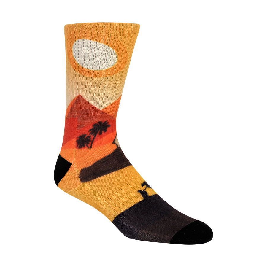 Journey through the Desert Mens Socks