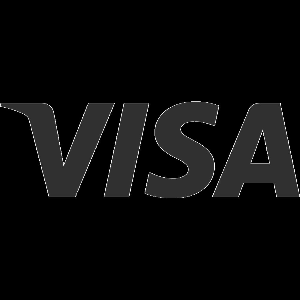 VisaLogo.png