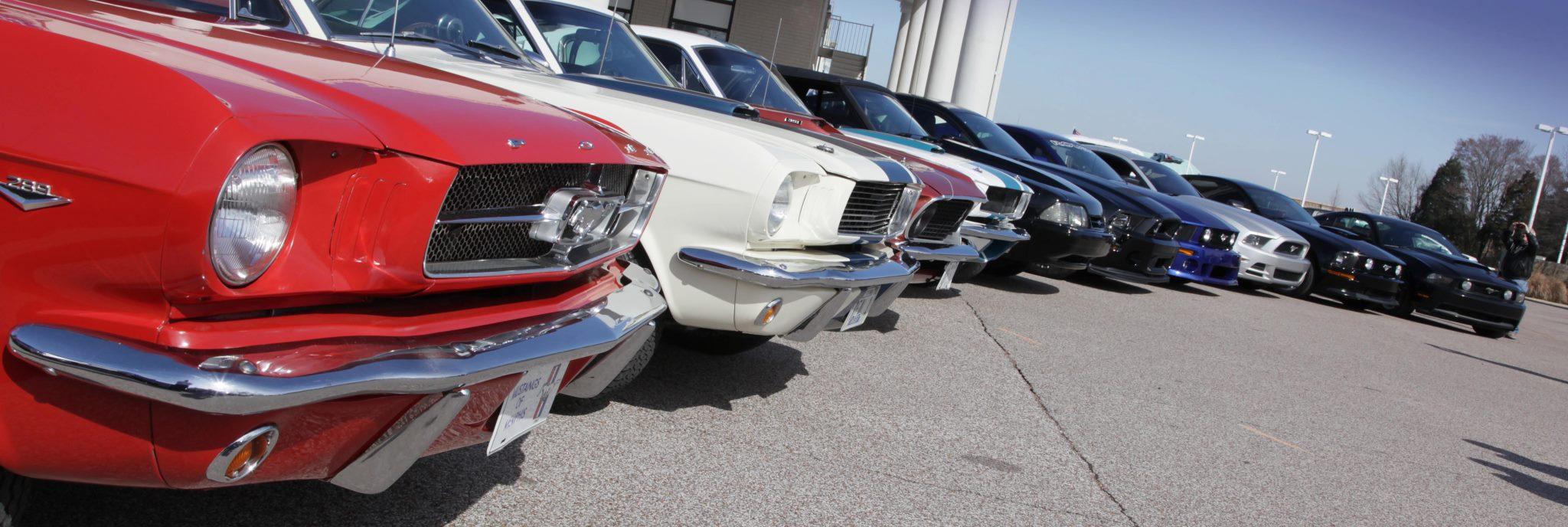 Mustangs Of Memphis - Mustangs of memphis car show