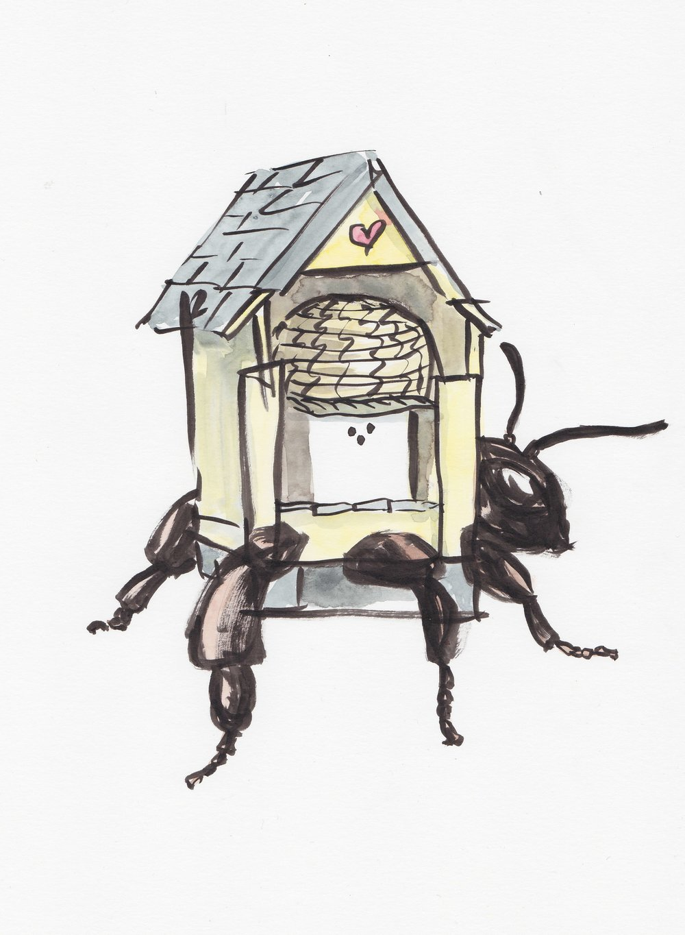 Hermit Hive II: Joy  (Indian ink and watercolour), 2017.  Bee Time Artist Residency , Emerson College, UK and  BUGONIA  exhibition, Bí URBAN, Dublin.
