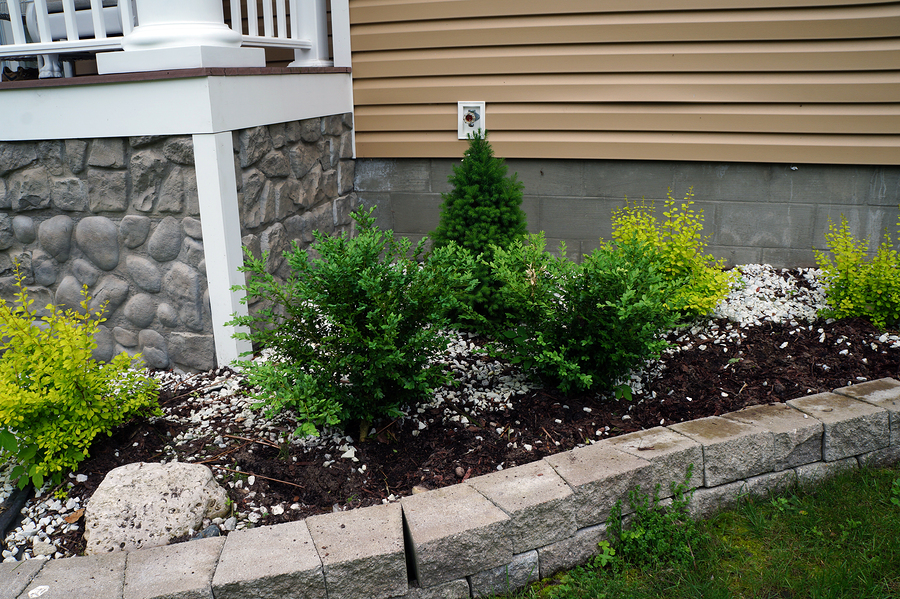 bigstock-Bushes-in-Front-of-a-House-101725664.jpg