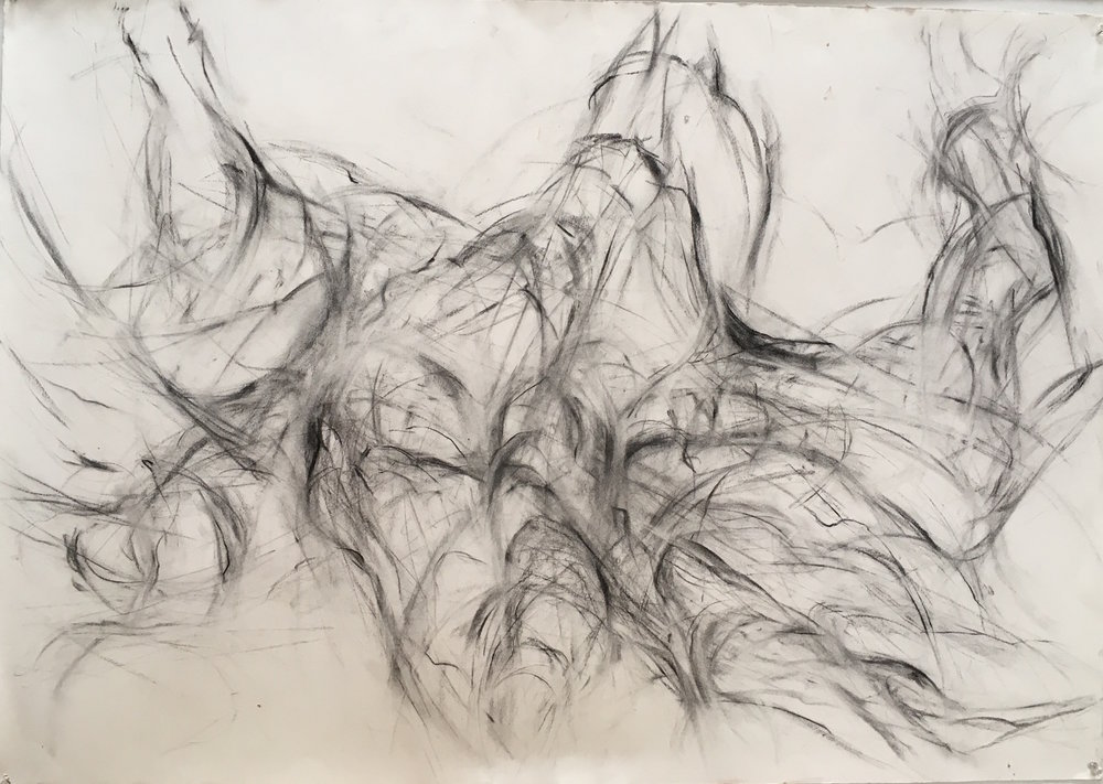 "River Root charcoal on paper 42""x 30"" 2015"