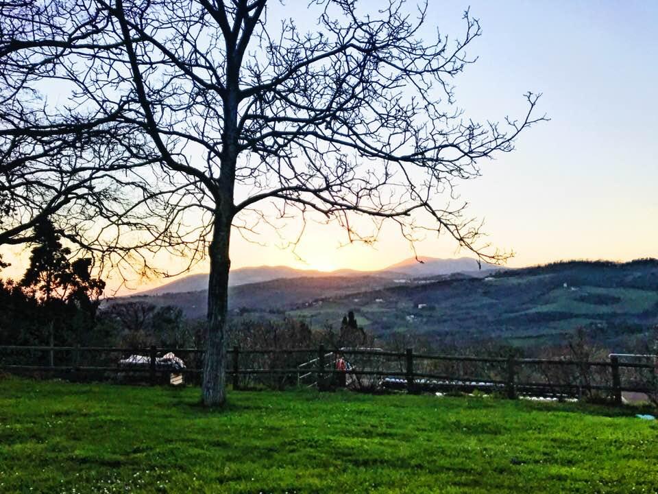 rollin hill sunset.jpg