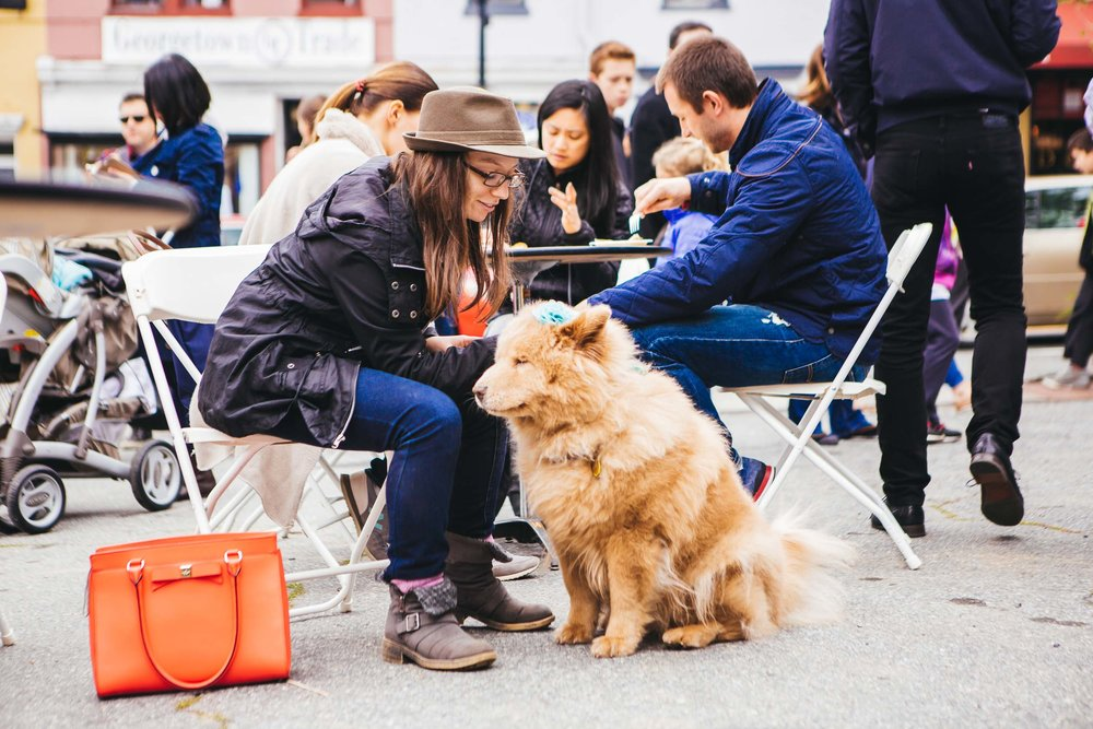georgetown-french-market-festival-2016-2_26790044146_o.jpg
