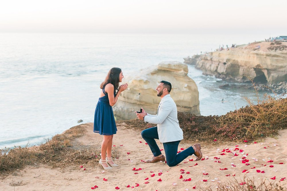 sagarandshreyaproposal_jaxconnolly.com_FB-34.jpg