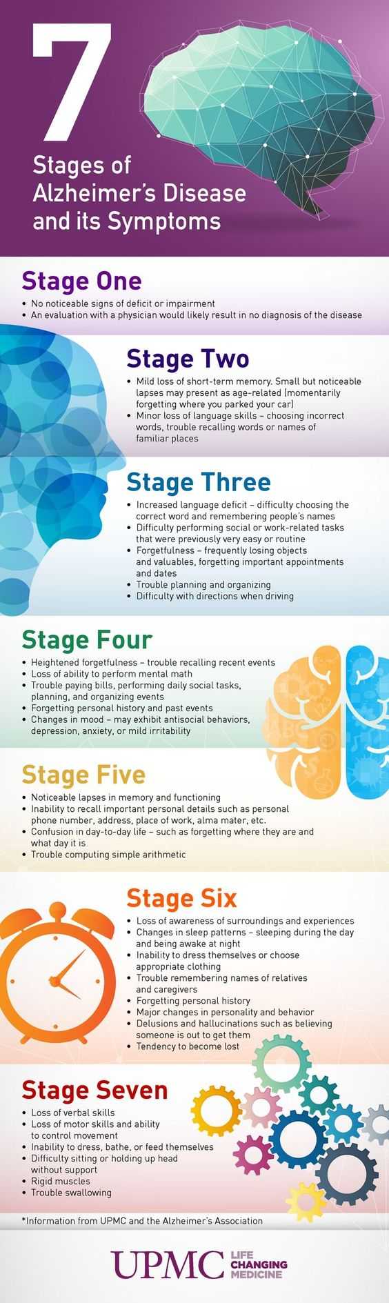 7 Stages.jpg