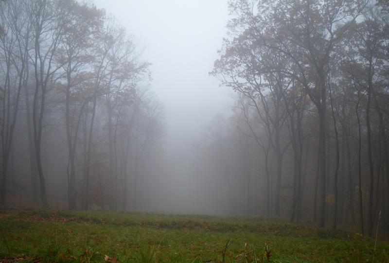 https://quovadisblog.com/wp-content/uploads/2009/11/009.JPG