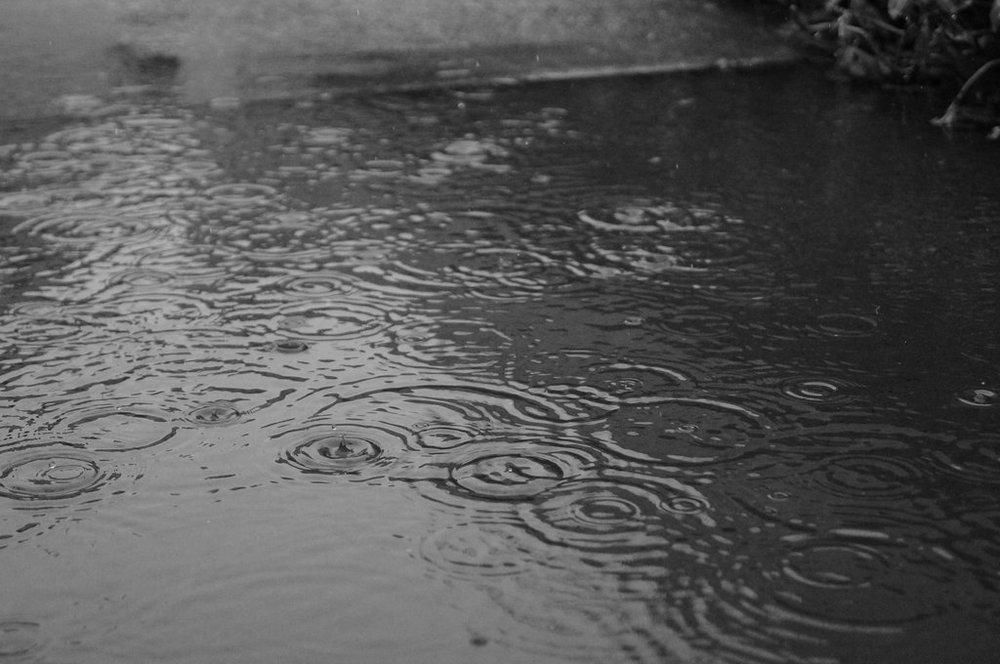 http://img15.deviantart.net/598e/i/2013/077/0/8/grey_rainy_day_by_nicole1788-d5ygcj6.jpg