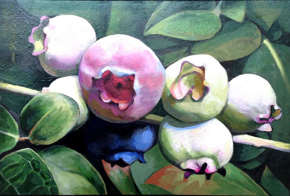 Big Pink Blueberry  Saul Krotki