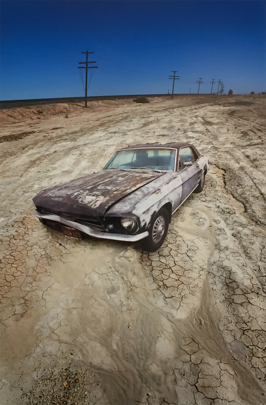 Abandon  Steve Marts.jpg