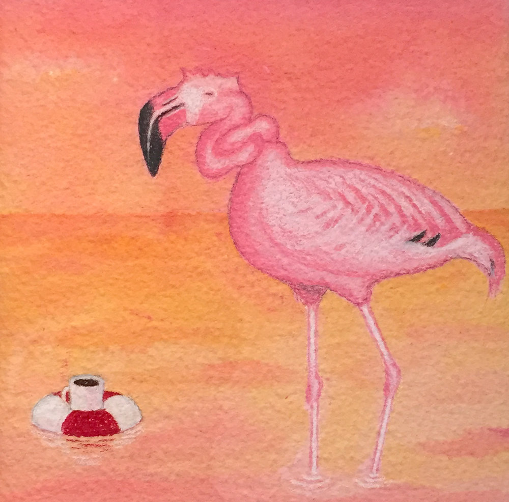 Flamingo Sunrise   Kamilla White