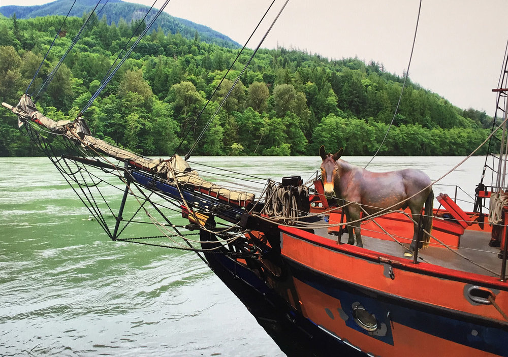 Captain Cook on the Skagit. Steve Marts.JPG