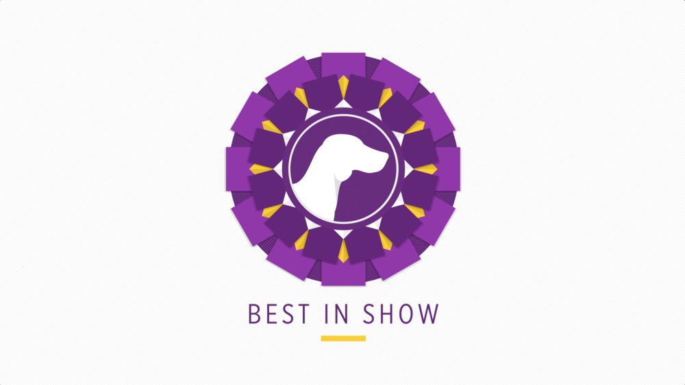 "PURINA PRO PLAN<strong>""DOG SHOW 101""</strong>"