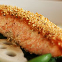 salmon with hemp