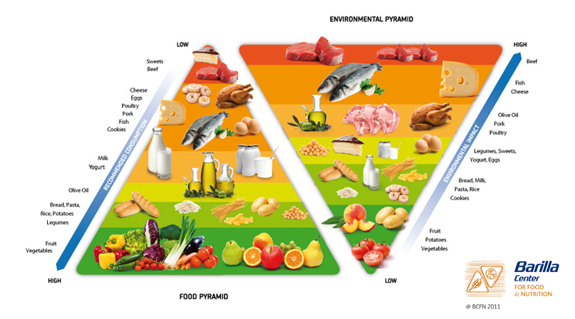 Double Food Environmental Pyramid - Interview with Marion Nestle