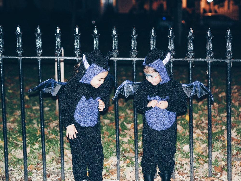 bat friends.jpg