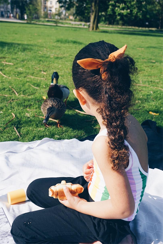 ducks in the park.jpg