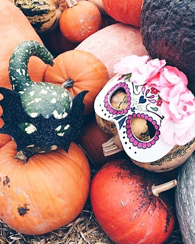 Time is up, planning for our Halloween Party!🎃 how is your Sunday going? By the way the time changed today⏰. #bloggerstyle #thetinyrules #halloween🎃 #halloween2018