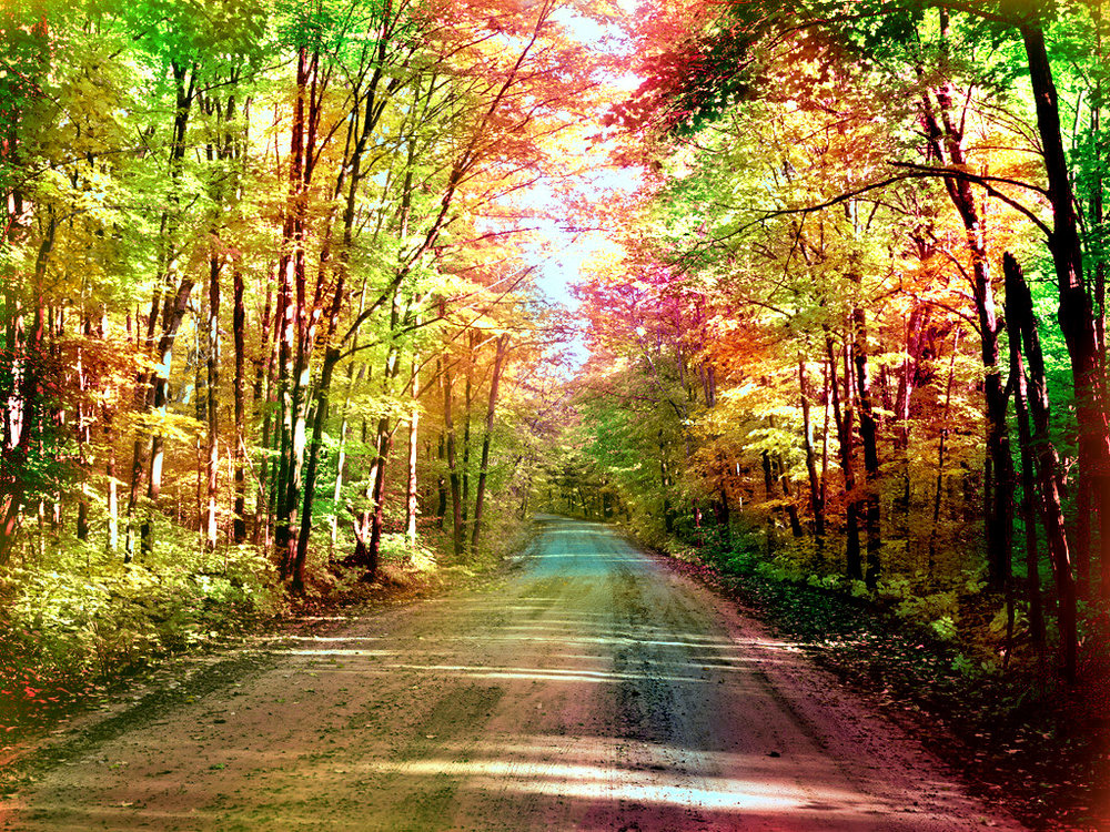 seasons_change_wallpaper_syobj.jpg