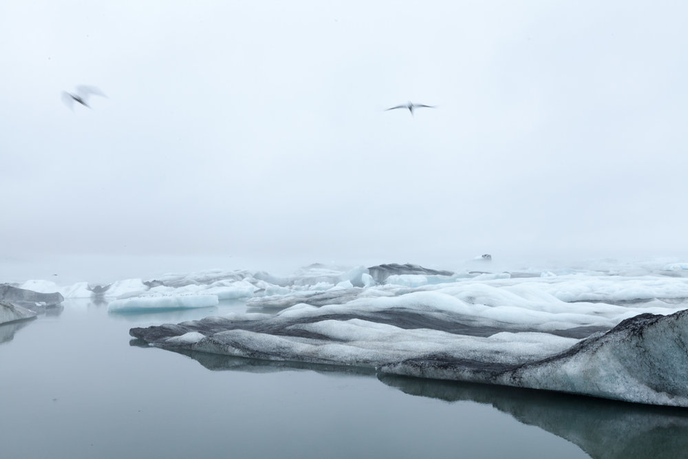 iceland-2032.jpg
