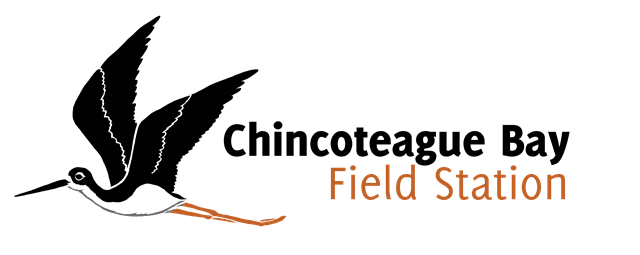 CBFS Logo H.png