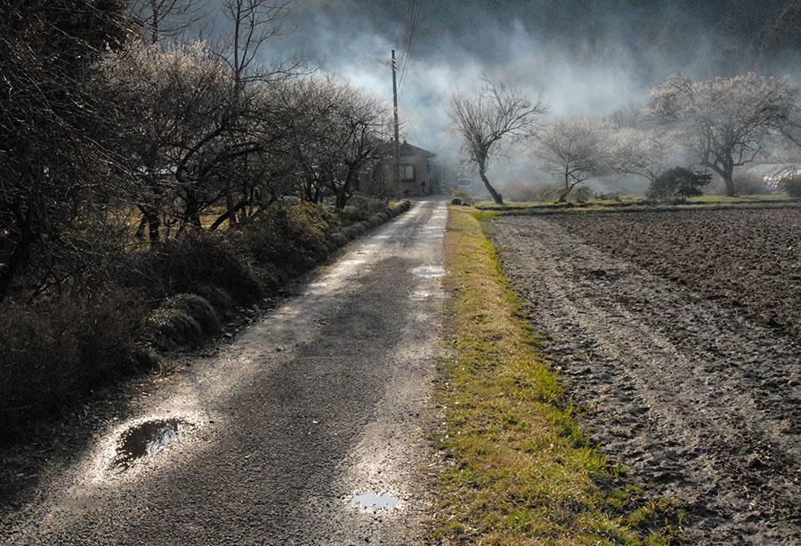 Tochigi Prefecture, Japan // ©Sheila Masson