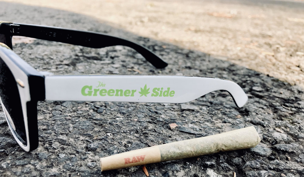 sunglass and joint.jpg