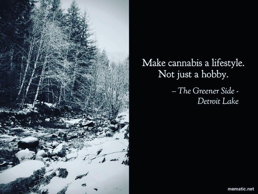 make cannabis a lifestyle.jpg