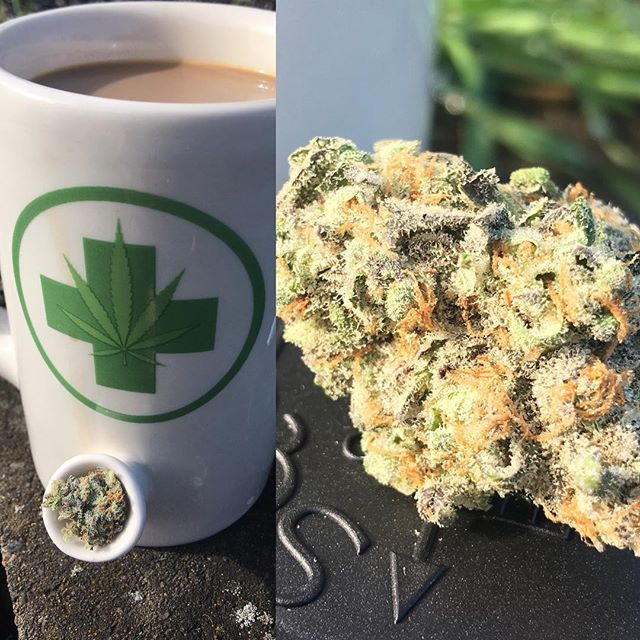 The Doctor aka Dr. Who a solid indica with #terps to match. Some find it hard to smoke in the morning, but on a day when the sun is shining and you don't have much to do it's a great way start your day. What's your favorite morning smoke? 😁🙃🌱☀️🔥💨 #ommp #recreational #keepeugenegreen #thegreenerside #eugene #oregon #eugeneoregon #loud #cannabiscommunity #tgsbudtender #justdoobie #thebestdeals #spring #wakenbake • • • • Nothing is for sale on Instagram. Do not drive or operate machinery under the influence of cannabis. For Adults 21+ and OMMP only. *