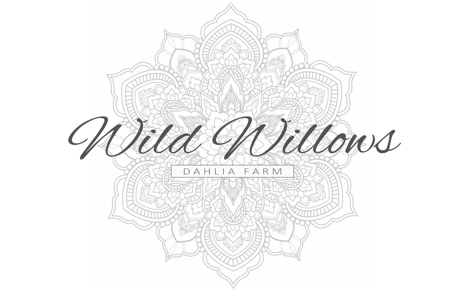 wild willows