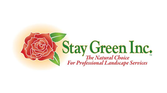 stay-green-case-study-logo.jpg