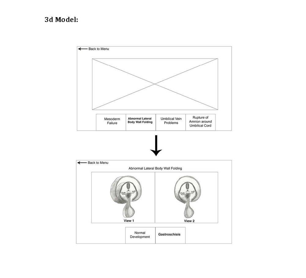 Wireframe of 3D Model Module