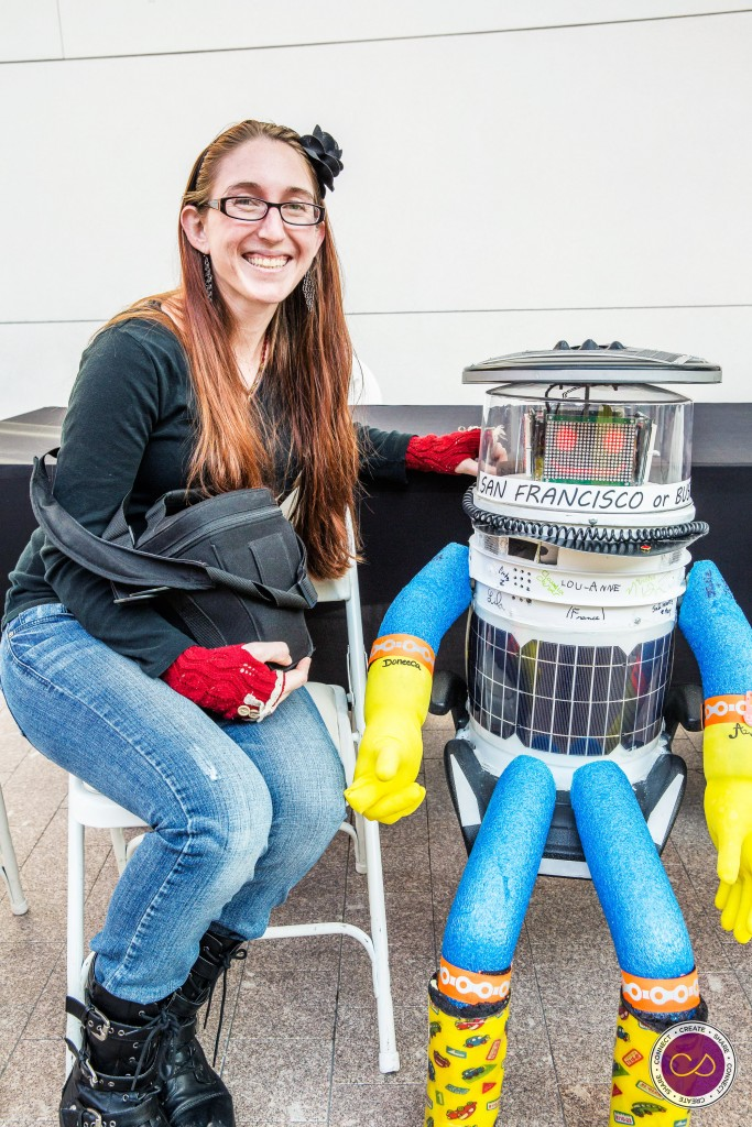 HitchBot in USA
