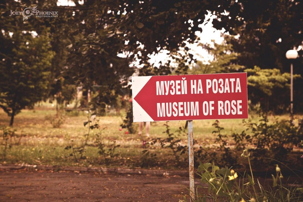 Museum of Rose