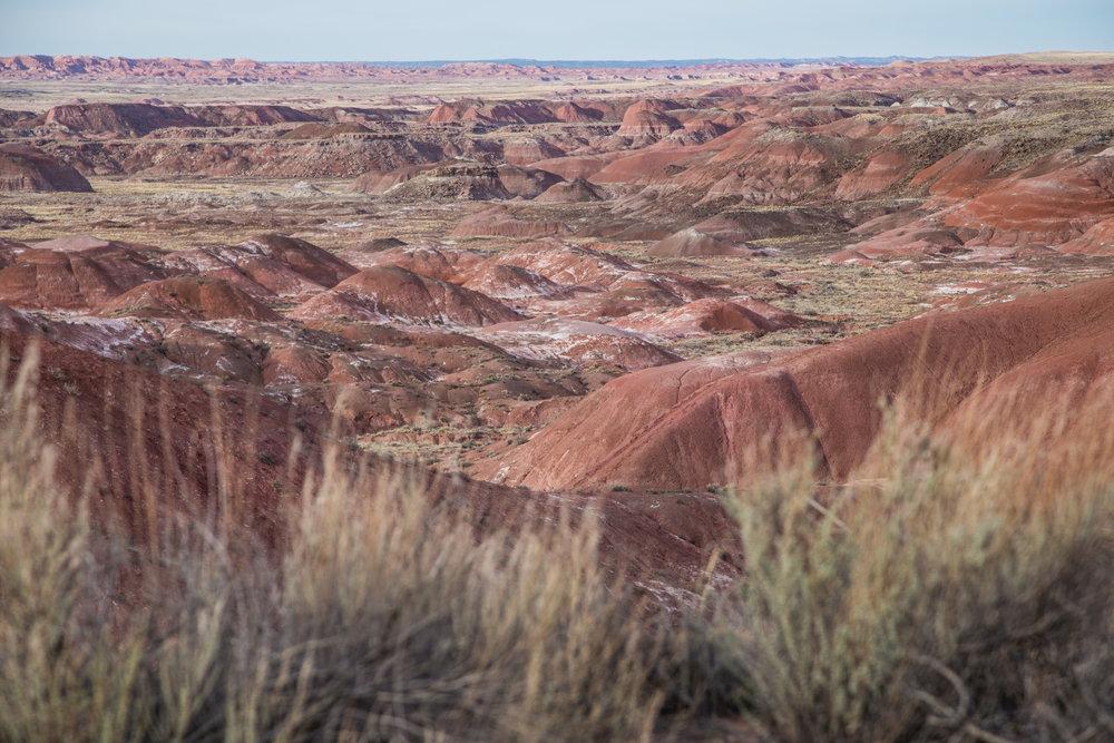 Arizona-4322.jpg